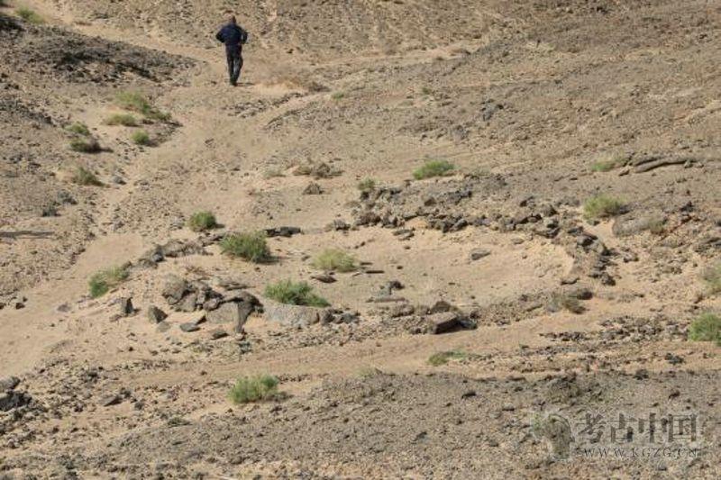 内蒙古阿拉善多处文物遗址取得重大发现
